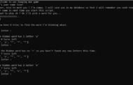Homme pendu en Python avec code source