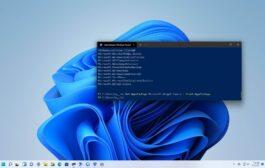 Comment réinitialiser l'application à l'aide de PowerShell sur Windows 11 • Pureinfotech