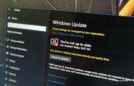 Microsoft confirme la sortie de la mise à jour de Windows 10 novembre 2021 (21H2) • Pureinfotech